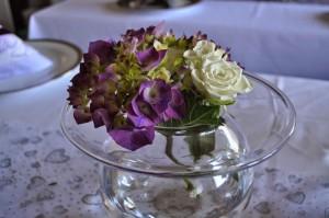 lilla hortensia